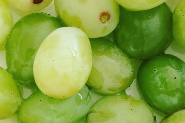 Wist jij dit over druiven?
